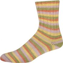 !Supersocke Cotton Plus - Color #2410