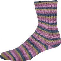 !Supersocke Cotton Plus - Color #2411