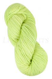 Araucania Huasco Worsted - Fennel Root (Color #309)