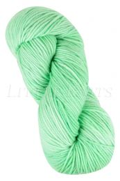 Araucania Huasco Worsted - Minty Fresh (Color #312)