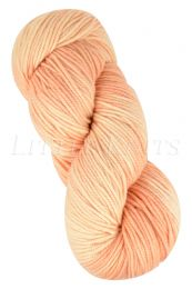 Araucania Huasco Worsted - Cantaloupe (Color #313)