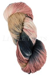 Araucania Huasco Worsted - Grilled Salmon (Color #502)