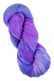 Araucania Huasco Worsted - (Color #506)