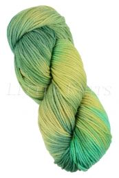 Araucania Huasco Worsted - Sunrise Garden (Color #508)