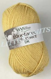 West Yorkshire Bluefaced Leicester DK - Catkin (Color #201) - FULL BAG SALE (5 Skeins)