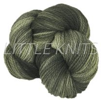 Dream In Color Merino 2-Ply Kettle Dyed - Boot Camp