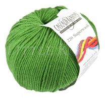 Cascade 220 Superwash - Mint Green (Color #254)