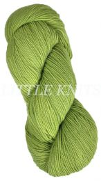 Araucania Huasco - Grass (Color #111)