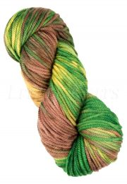Araucania Huasco Chunky - (Color #01)