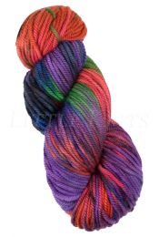 Araucania Huasco Chunky - (Color #06)