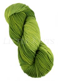 Araucania Huasco Chunky - Grasslands (Color #102)