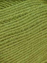 Ella Rae Cozy Soft Solid - Parrot Green (Color #49)