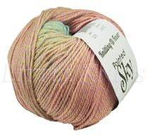 Knitting Fever Painted Sky - Nursery Jam (Color #215)
