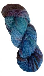 Malabrigo Worsted One of a Kind - It Must Be Kismet