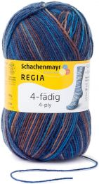 !Regia 4-Ply Color - Skater (Color #5171)