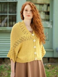 Sagebrush (Purchase ONLY ONE COPY to get all the patterns from Berroco Maya Vol 1 #331)
