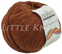 Cascade 220 Superwash - Pumpkin Spice (Color #1920)