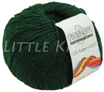 Cascade 220 Superwash - Forest Heather (Color #866)