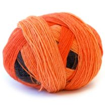 Zauberball 100 Sock - Color #2247